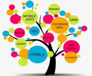 web developmen